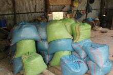 3月カンボジア洪水支援?