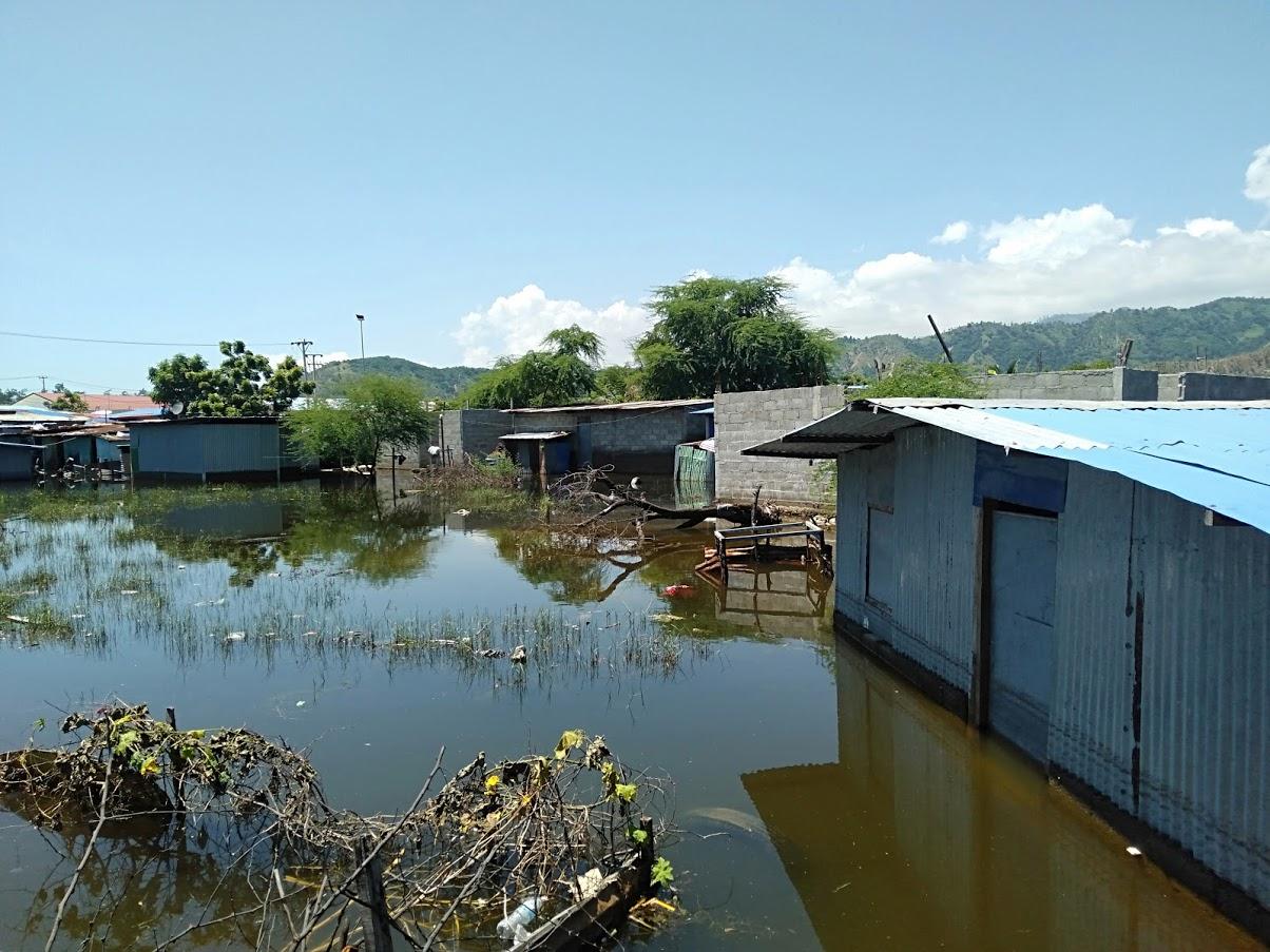 水に浸かった家屋.jpg